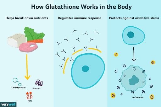 glutathione-trong-co-the